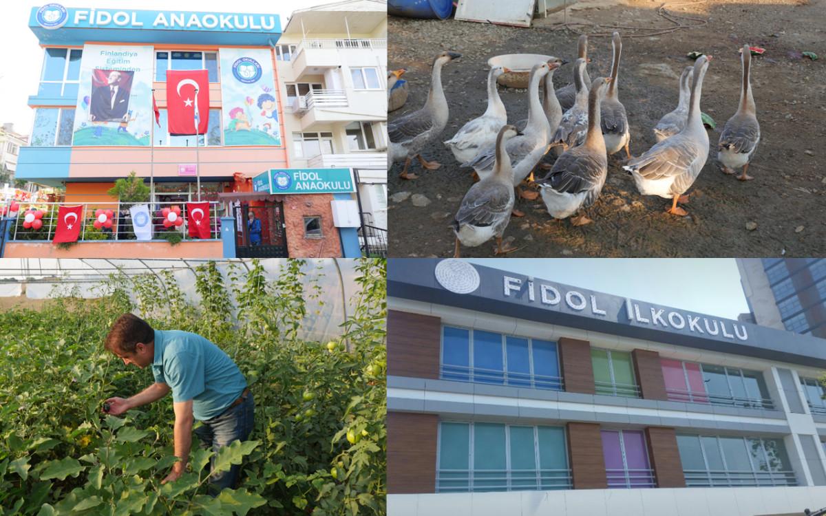 Finlandiya eğitim sistemi Türkiye'de